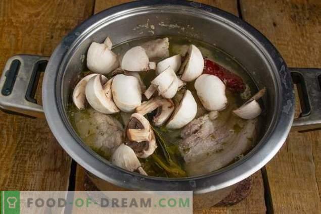 Негување на свинско месо со печурки во земја стил