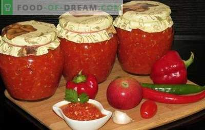 Adjika за зимата: ние чуваме остар вкус! Рецепти adjika за зима со јаболка, тиквички, рен, модар патлиџан, тиква, сливи, краставици, круши, ореви