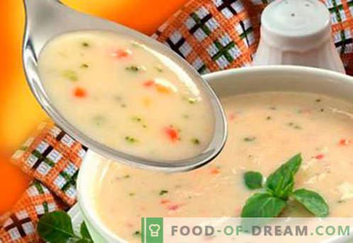 супи за деца - докажани рецепти. Како да правилно и вкусно готви супа за деца.