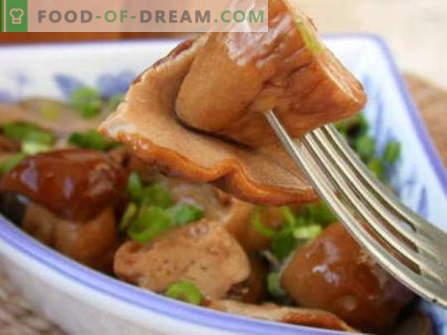 Печени кикирики - најдобри рецепти. Како да правилно и вкусно готви кисела печурка.