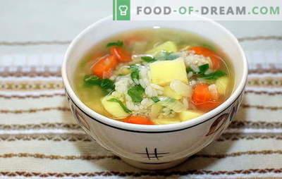 Супа од пилешки ориз: основни правила за готвење. Единствени и класични верзии на оризова супа со пилешко