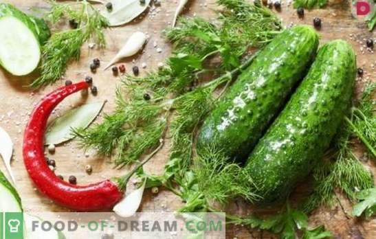 Колку е вкусно да се направат солени краставици? Варијанти на солени краставици со дабова кора, рен, лимон, нане, оцет и леб