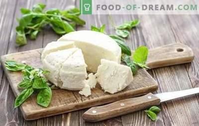 Сирење од кисело млеко е природен млечен производ. Варијанти на готвење сирење од јогурт дома