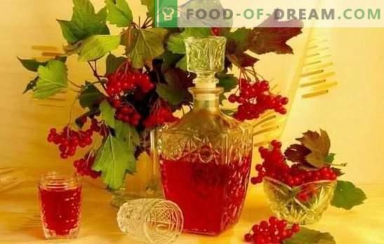 Домашна тинктура на Viburnum е вкусна и здрава. Како да направите тинктура од вибурнум дома на алкохол, коњак, муншал или вотка