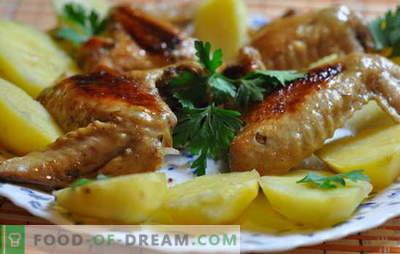 Alitas de pollo con papas en el horno - ¡presupuesto! Recetas de alitas de pollo con papas en el horno: en italiano, en cerveza, etc.