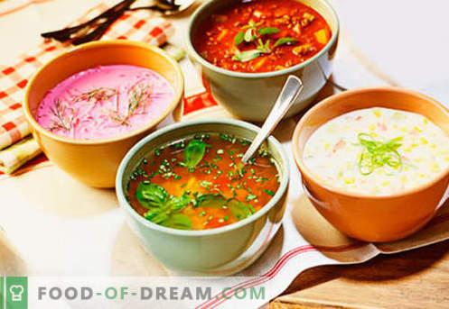Студени супи - докажани рецепти. Како да се готви вкусни ладни супи со колбаси или харинги