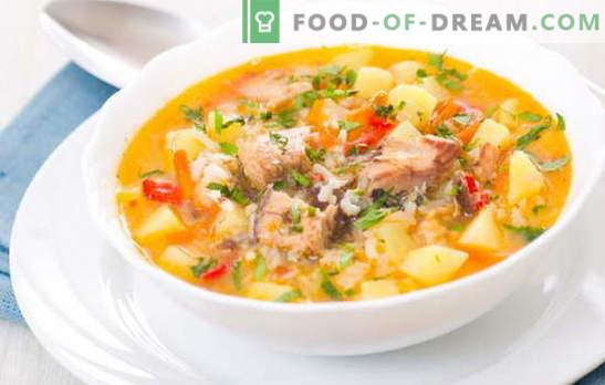 Риба супа со ориз е лесен, вкусен прв курс за ручек. Најдобри рецепти за готвење супа од риба со ориз