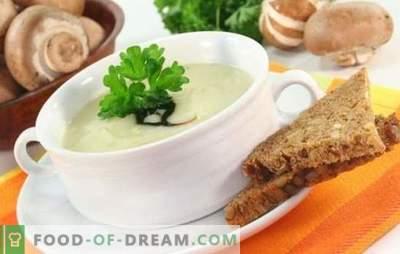 Pilzsuppe mit geschmolzenem Käse ist ein unvergessenes Gericht! Rezepte der besten Pilzsuppen mit Schmelzkäse
