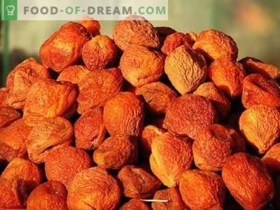 Aprikos - beskrivning, användbara egenskaper, användning i matlagning. Recept med torkade aprikoser.