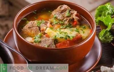 Кашлама на ерменски е источен гостин! Рецепти кои негуваат Кашлама на ерменски со разновиден зеленчук, месо, живина, печурки, дуња
