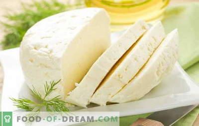 Најдобри рецепти за домашно кравјо млеко од кравјо млеко. Сирење од кравјо млеко: основни правила за производство на домашно сирење