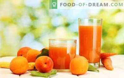 Сок од кајсија за зима - сончев пијалок! Различни начини на берба на сок од кајсија за зима дома