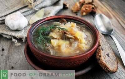 Супа од Пост - за постот и исхраната се добри! Најдобри традиционални и оригинални рецепти за супа од месо без месо и животински масти