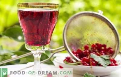 Rode bessenwijn: de belangrijkste stadia van het maken van fruitwijnen. Recepten voor zelfgemaakte rode bessenwijnen