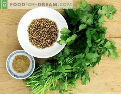 Коријандер - опис, својства, употреба при готвење. Рецепти со коријандер.