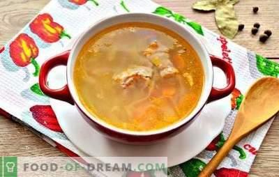 Едноставни рецепти богати со зелка направени од свежа зелка со свинско месо. Готвење најмногу руска супа - супа од свежа зелка со свинско месо