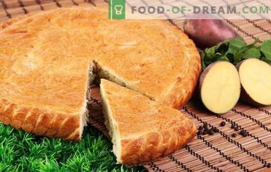 Пире од компир - дури ни трошка! Едноставни рецепти на желеени пити на мајонез, павлака, кефир и ржанец