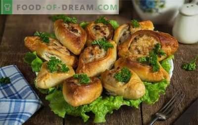 Пита со мелено месо е необична пита од квасец. Домашни рецепти за вкусни пити со мелено месо и риба