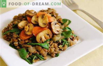 Печени печурки со моркови - најдобрите рецепти. Тајните на готвењето пржени печурки со моркови: во павлака, со зеленчук и житни култури