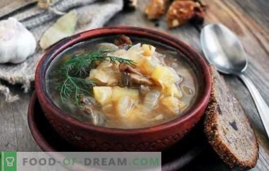 Супа од зеленчук со печурки: традиционална и оригинална. Тајните на супа од зелка со печурки, леќа, грав, јачмен