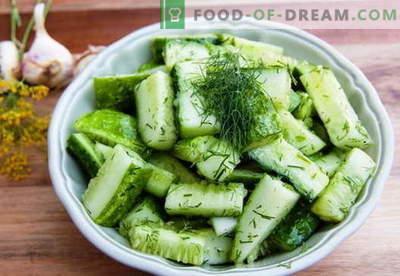 Салата од краставици - најдобри рецепти. Како правилно и вкусно да се готви краставици салати.