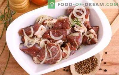 Најдобрата маринада за свинско ќебап - што е тоа? Најдобри мариновани рецепти за свинско месо на кефир, минерална вода, сок од калинка