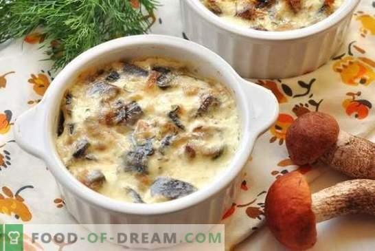 Пилешко со печурки во тенџере во рерната - нежно месо со вкус на печурки. Рецепт пилешко со печурки во саксии за секој вкус
