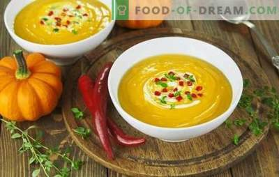 Супа-пире рецепти се брзи и вкусни - тендерски и хранливи. Како да се готви супа од супа: рецепти за брзи и вкусни првични курсеви