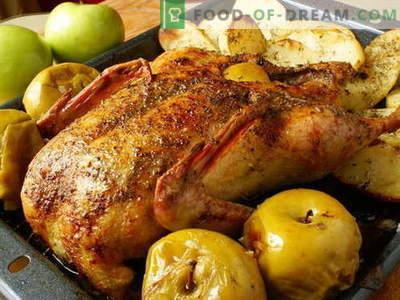 Патка со јаболка - најдобри рецепти. Како правилно и вкусно да готви патка со јаболка.