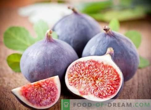Смокви - корисни својства, употреба при готвење. Рецепти со смокви.