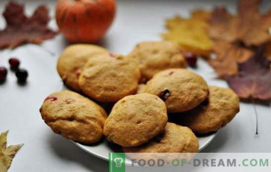 Едноставни вкусни колачиња за кефир - традиција на домашно печење. Рецепти едноставни колачиња за кефир: овес, со цимет, чоколада, ореви, афионски семиња итн.