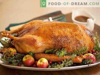 Ganso assado no forno - as melhores receitas. Como corretamente e saboroso cozinhar ganso no forno.