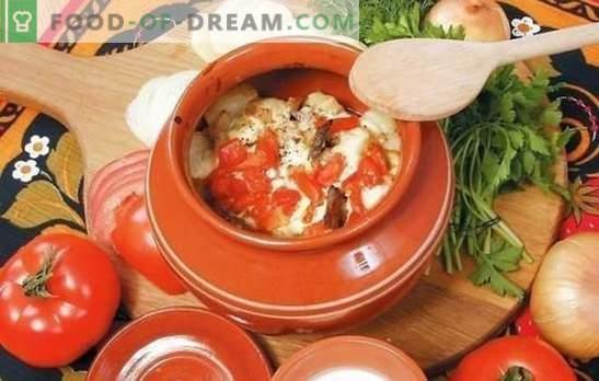 Зеленчук во сад за печка: зелка, компир, свинско месо и малку повеќе. Избор на најдобри рецепти за зеленчук во сад за печка