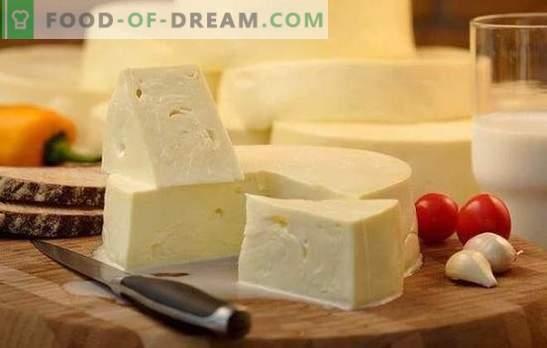 Како брзо да готви suluguni дома: рецепт за млади бело сирење. Готвење нежно сулугуни сирење дома