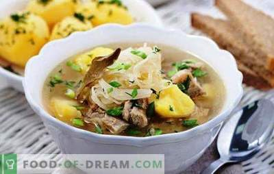 Soup in a slow cooker - rich soup like from a Russian stove. The best recipes and features of cooking soup in a multicooker