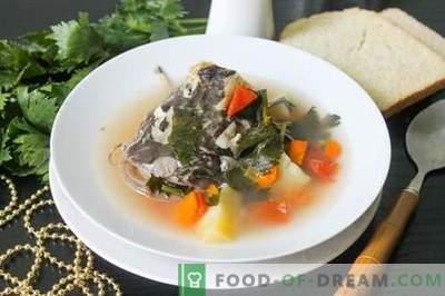 Супа од сом - како да се готви правилно и вкусно (рецепт со слики)