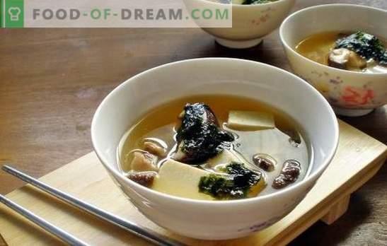 Супа од печурки од остриги - ароматично јадење за ручек во секое време од годината. Најдобрите рецепти од супа од печурки од печурки од остриги со пилешко, сирење и др.