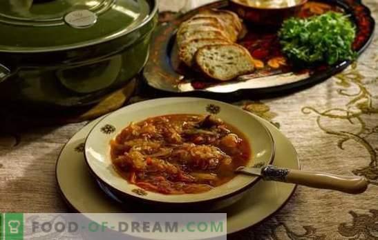 Дневна супа - готви според старите рецепти! Технологија за готвење, состојки и различни варијации на дневна зелка