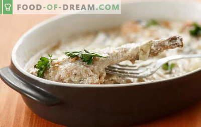 Зајак во кисела павлака во рерна - вкусно во секој случај. Рецепти зајакот во павлака во рерна со зеленчук, печурки, сирење