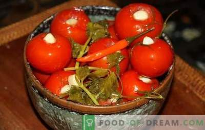 Маринирани домати со лук - омилена закуска! Рецепти кисела домати со лук: незаборавно вкус