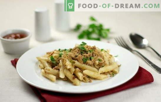 Морски тестенини со мелено месо - тоа е брзо и хранливо! Топ 10 рецепти за тестенини со мелено месо: свинско, пилешко, колективно