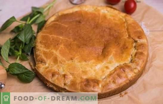 Брзата пица од мајонез е вистинско стапче! Рецепти брзи пити за мајонез со зелка, риба, компири, ориз