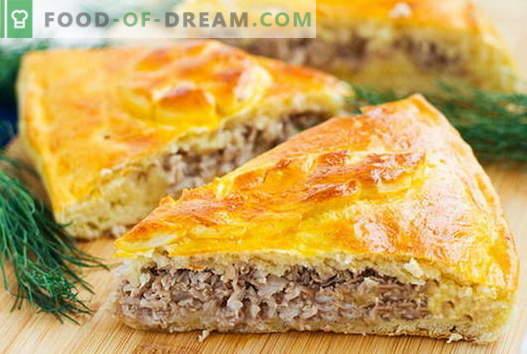 Pie и месо patties се најдобри рецепти. Како да правилно и вкусно готви месо пити.