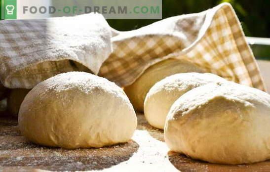 Тесто за белците - трпеливост, и сè ќе работи! Различни рецепти за тесто за белците: квасец, течен, ладен, зачинет
