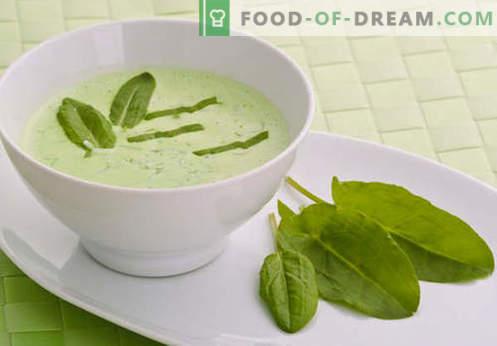 Супа во говедско супа - најдобрите рецепти. Како правилно и вкусно готвач супа на говедско супа.