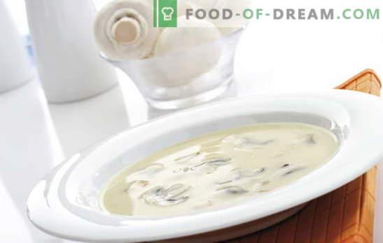 Шампнин крем супа е сложено, но прифатливо јадење за секој вкус. Крвна супа од печурки со различни варијации на основата