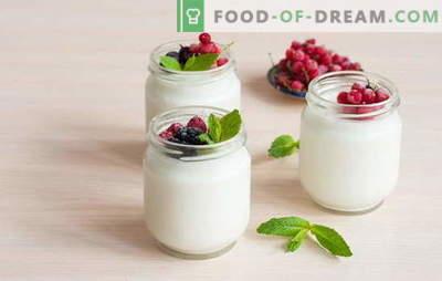 Како да направите јогурт дома: технологија. Јогурт рецепти дома: во јогурт творец, термос, тенџере