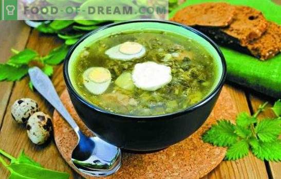 Супа од кикирики - брза, свежа, вкусна. Едноставни рецепти на кисела супа без месо, на коскена супа, со гранче, на крем