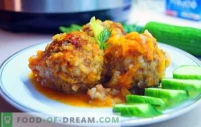 Ежови во бавен шпорет - интересни и вкусни! Рецепти на различни ежи од мелено месо со ориз, зеленчук, леќата, печурки за мултикукер