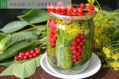 Краставици маринирани со црвени рибизли - сите бои на летото во еден може